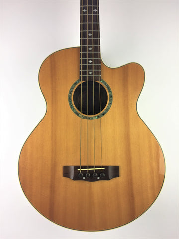 Gold Tone ABG-4 Acoustic Electric