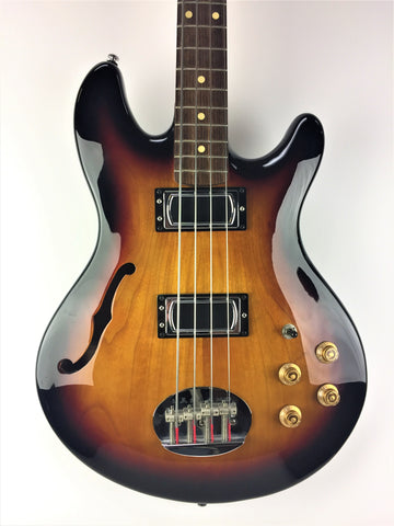 Lakland Skyline Hollow Body