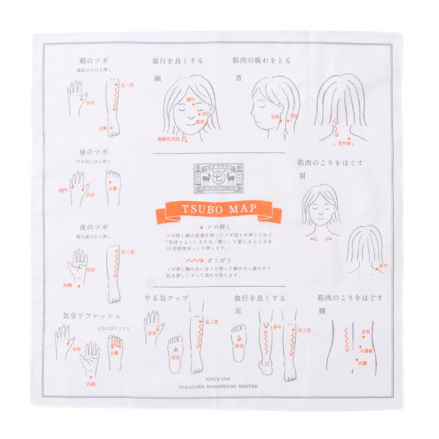 ACUPUNCTURE POINT SET