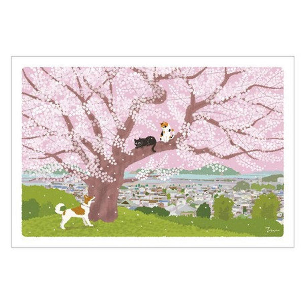Post card with cats in Japan | spring