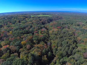 Chestnut Ridge from above Fall Version!