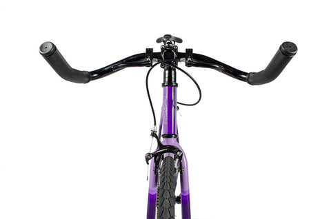 Fyxation Eastside Purple Reign