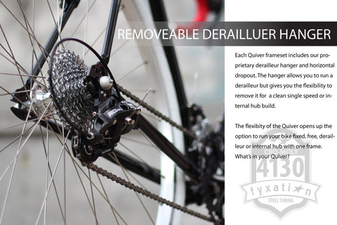 Removable Derailleur Hanger