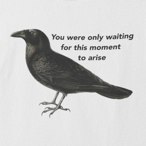 Blackbird t shirt