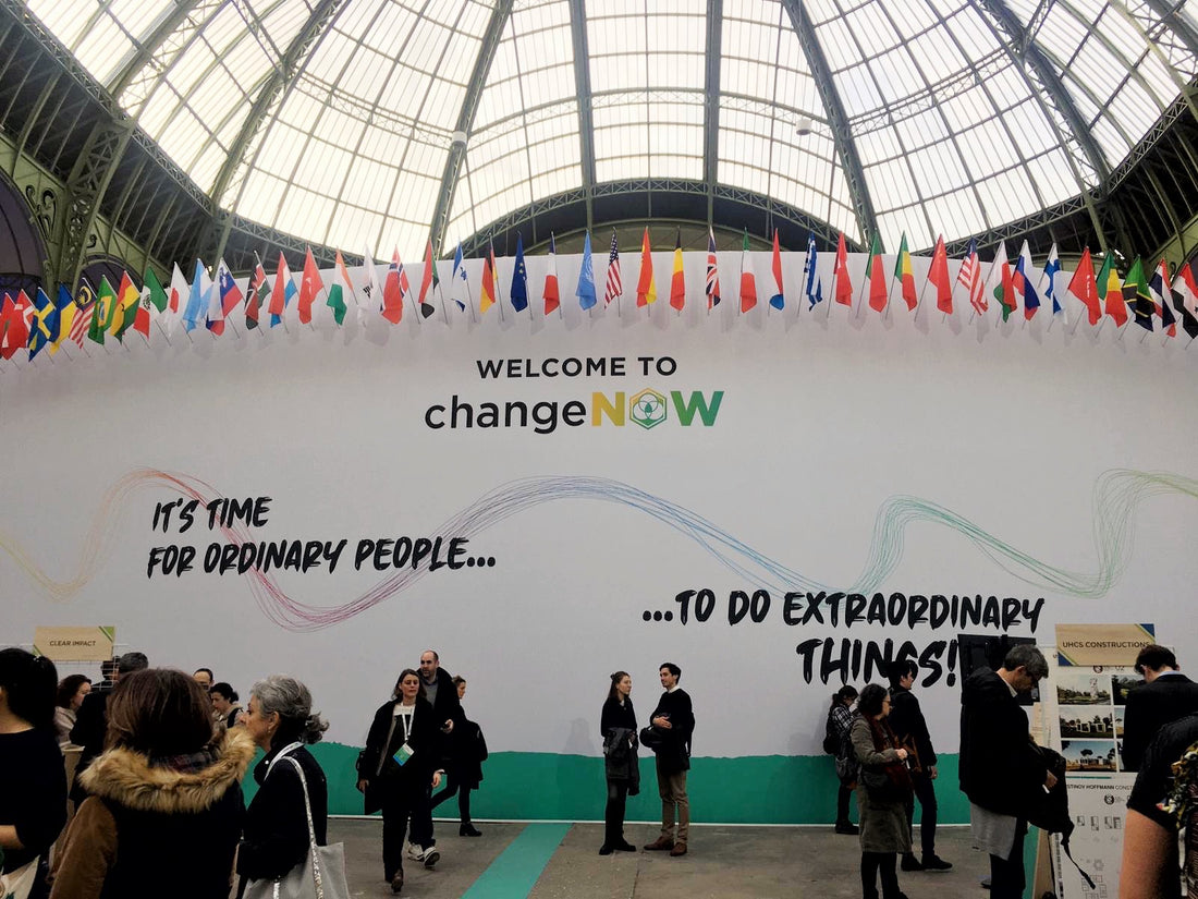 Celebrating the Change Makers: A Summary of the ChangeNow Summit 2020