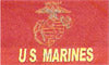 US Marines with EGA