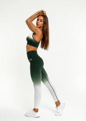 RapidWear - Ombre Seamless Leggings (Green)