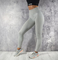 RapidWear - Seamless Mona Leggings (Grey)
