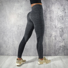 RapidWear - Seamless Celine Leggings (Charcoal)