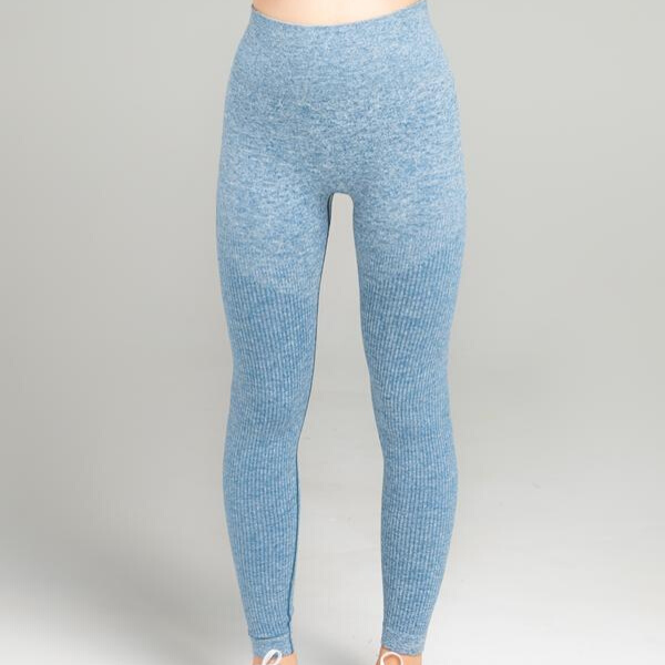WearWolf - Power Seamless Leggings (Blue)