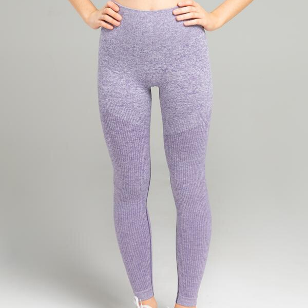 WearWolf - Power Seamless Leggings (Purple)