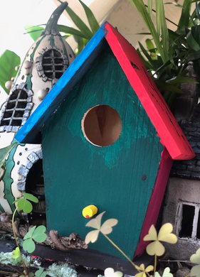 DIY Bird House Kit