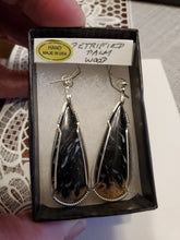 Load image into Gallery viewer, Custom Wire Wrapped Petrified Palm Wood Earrings Sterling Silver