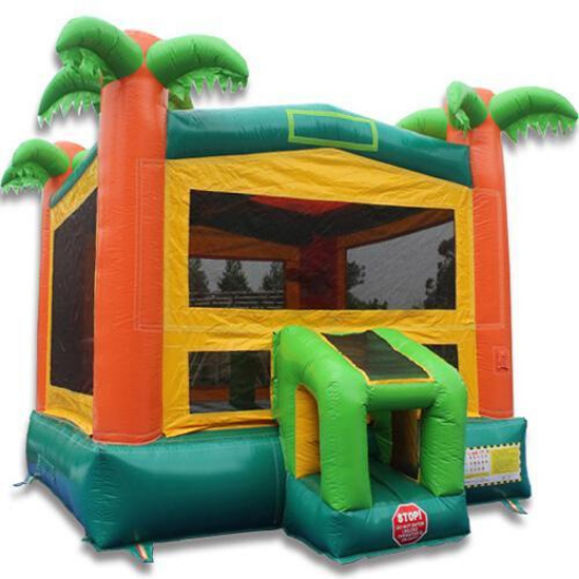 14' Paradise Commercial Bounce House