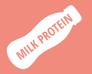 Ingredient Spotlight - Milk protein