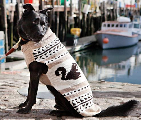 CHILLY DOG Cowichan Squirrel Sweater