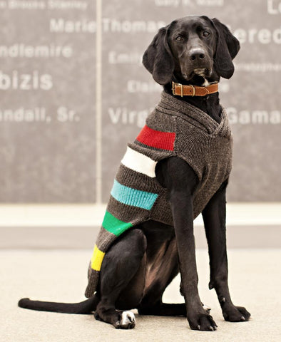 CHILLY DOG Charcoal Stripes Sweater