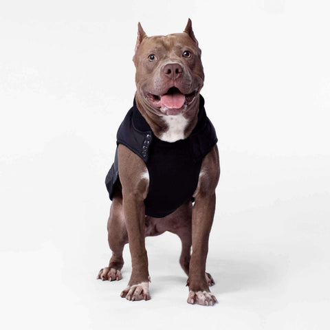 CANADA POOCH Summit Stretch Vest - Grey Pepper