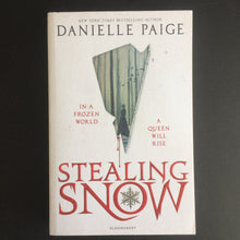 Load image into Gallery viewer, Danielle Paige - Stealing Snow