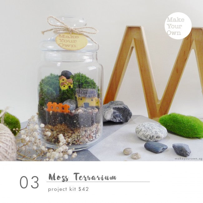 moss terrarium workshop singapore
