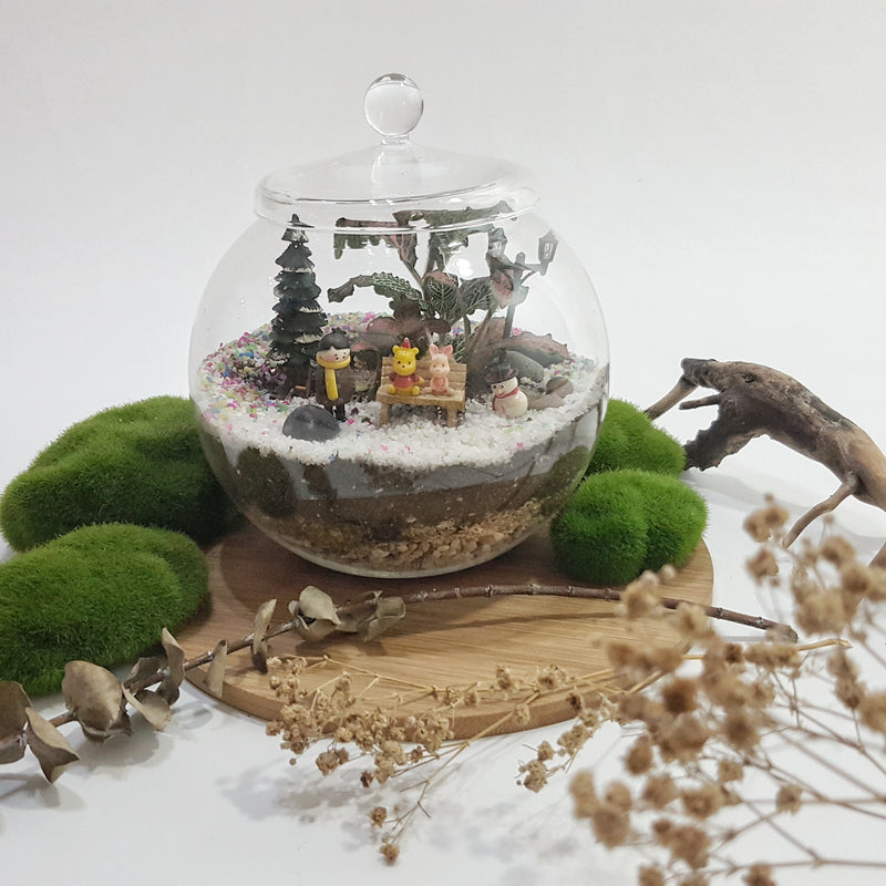 Closed Terrarium (Globe Lid Jar) DIY Kit