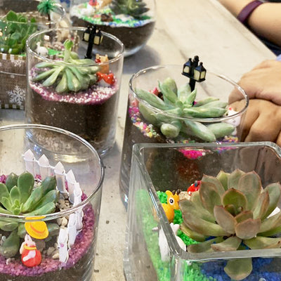 Corporate Terrarium Workshop - Open Terrarium Type A