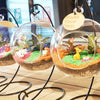 Corporate Globescape Terrarium Workshop