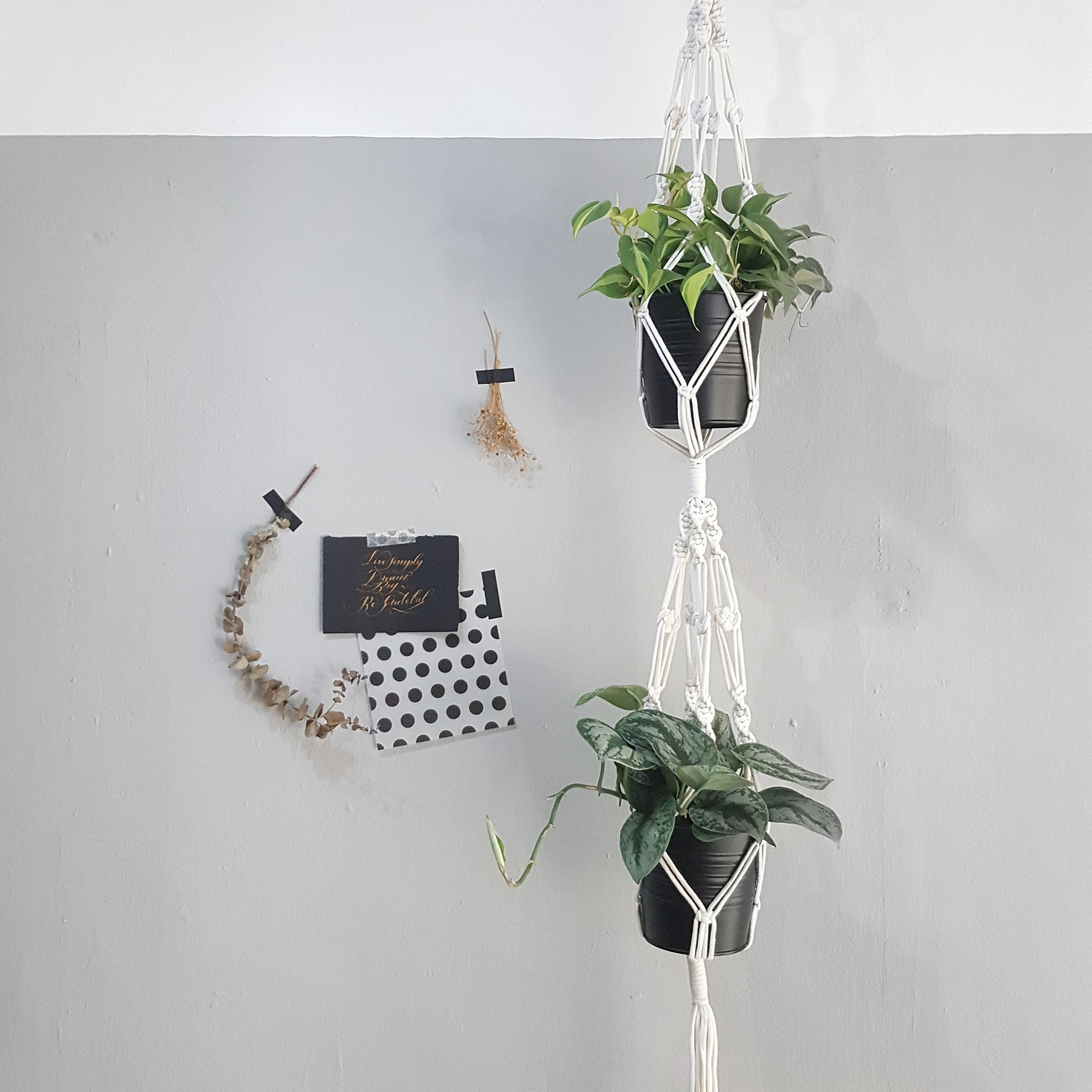 Macrame Double Plant Hanger A Make Your Own