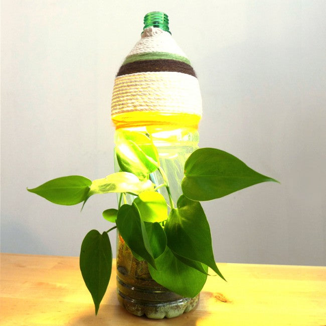Corporate Eco Bottle Planter Lamp Workshop Singapore