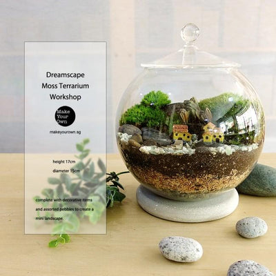 Virtual Zoom Corporate Dreamscape Moss Terrarium Workshop Singapore