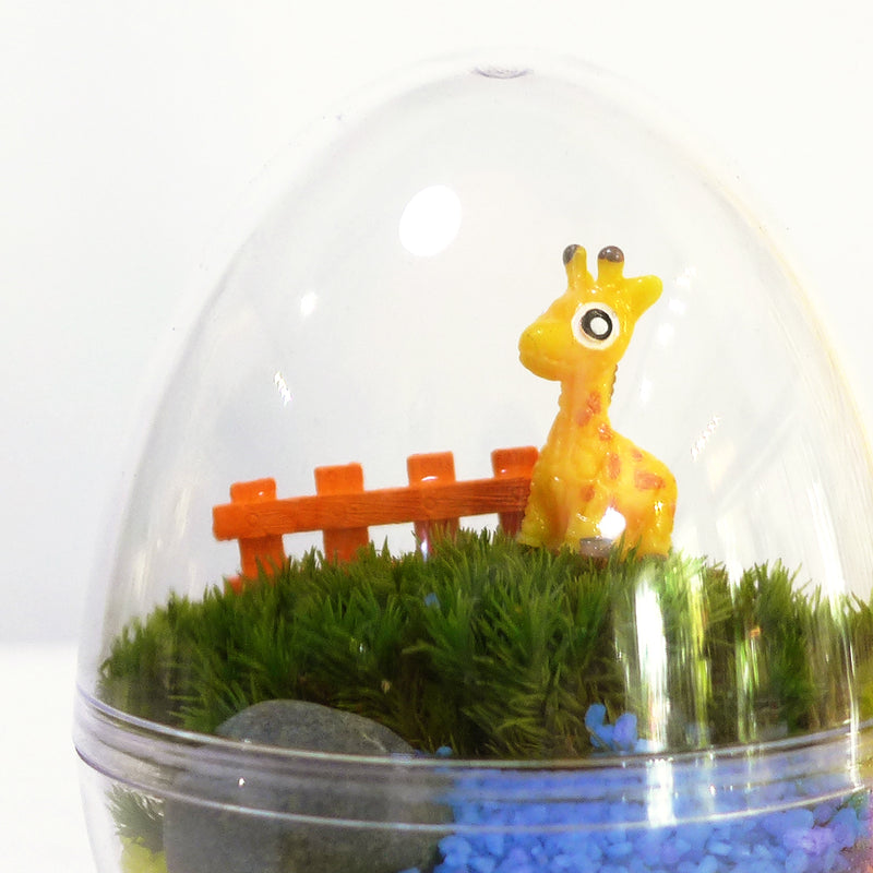 Kids Party Mini Egg Moss Terrarium DIY Kit