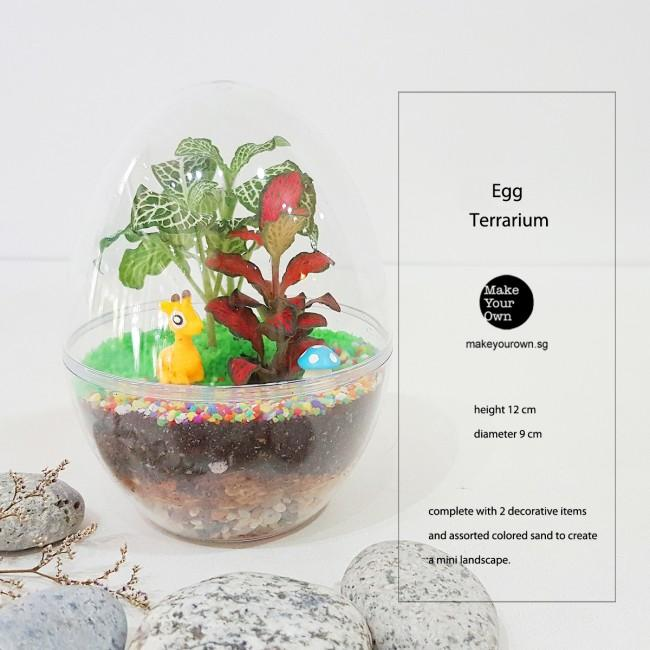 Virtual Zoom Corporate Egg Terrarium Workshop Singapore