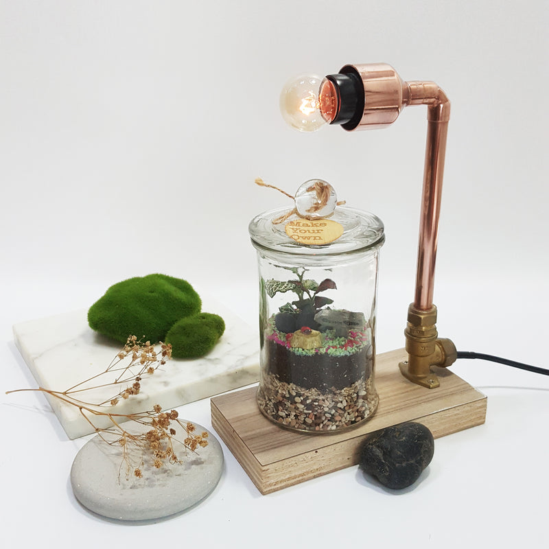 mini copper lamp and terrarium diy kit Singapore