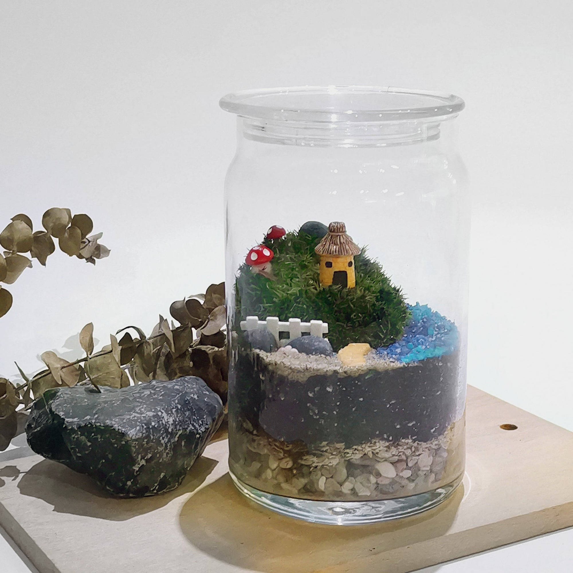 Terrarium ready made gift Singapore