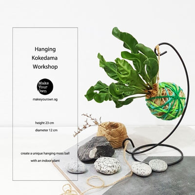 Corporate Hanging Kokedama Workshop Singapore