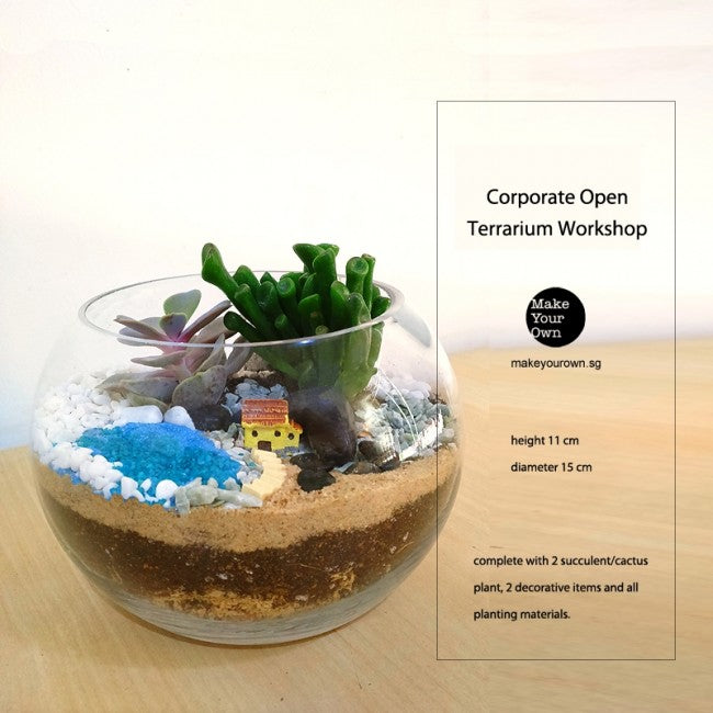 Corporate Terrarium Workshop Singapore - Open Terrarium Type B