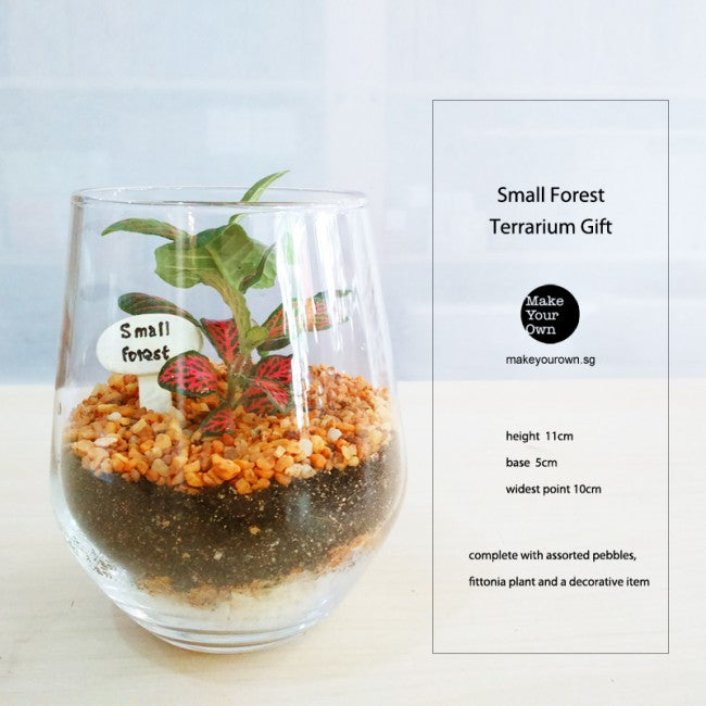 corporate gift terrarium singapore