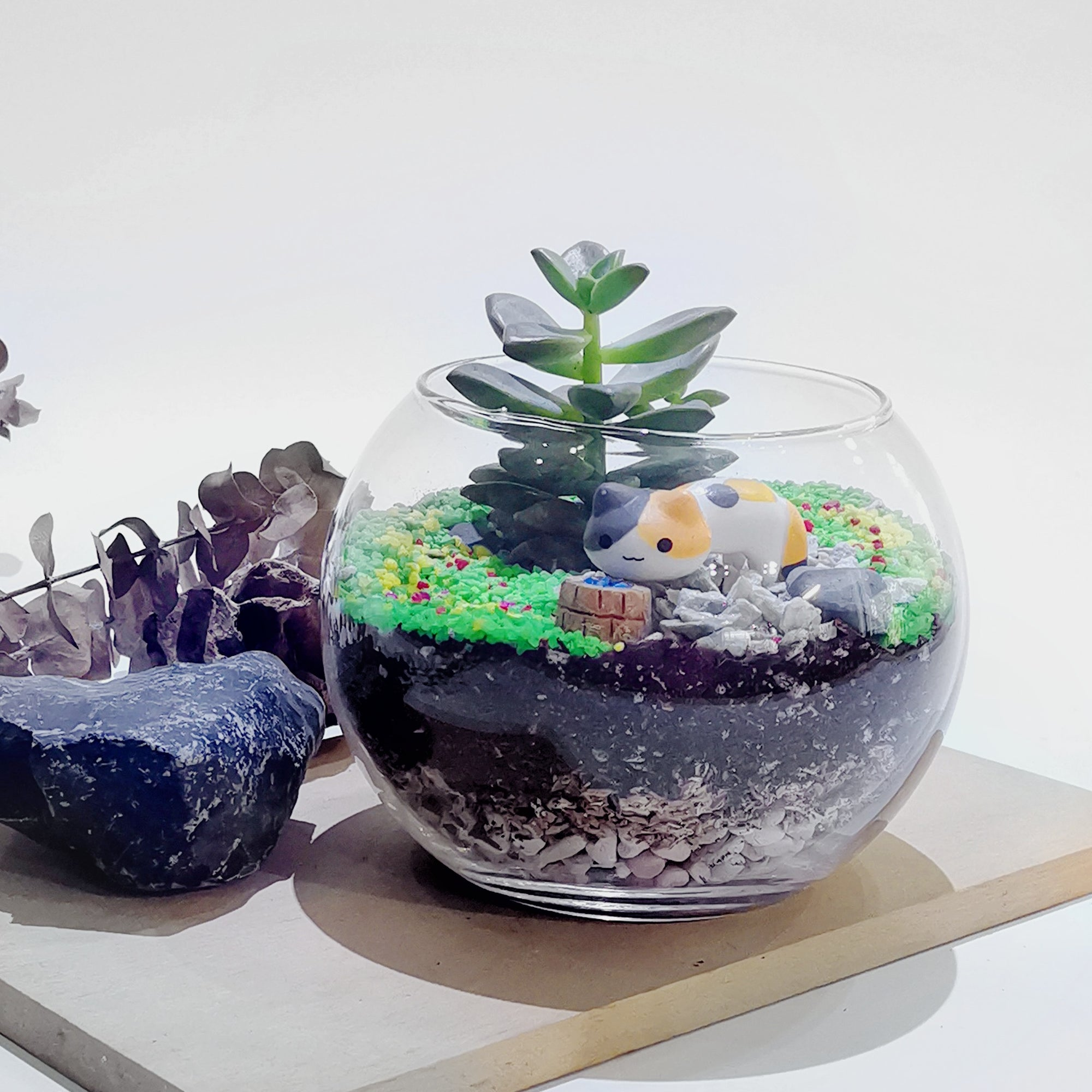 Open Terrarium Fish Bowl Make Your Own