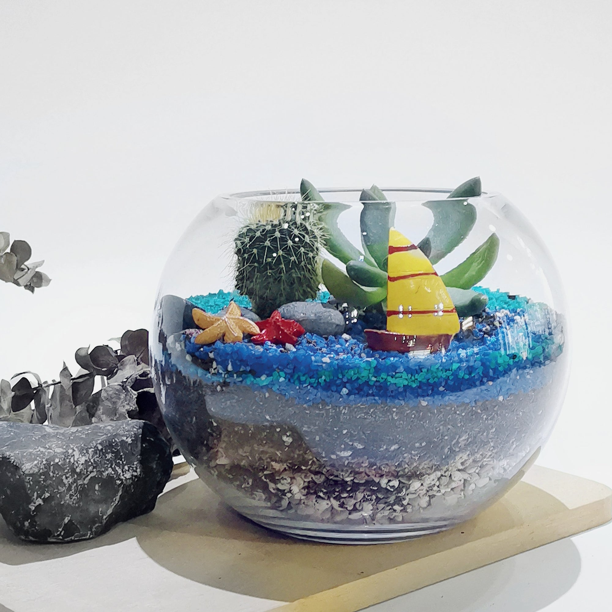 Open Terrarium - Fish Bowl (Medium)