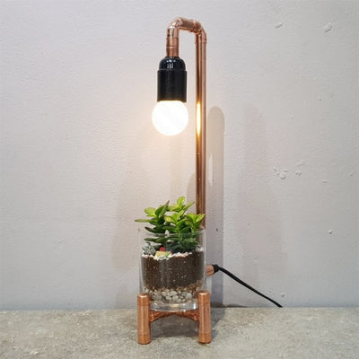 Terrarium Copper Lamp Workshop Singapore Diy Make Your Own