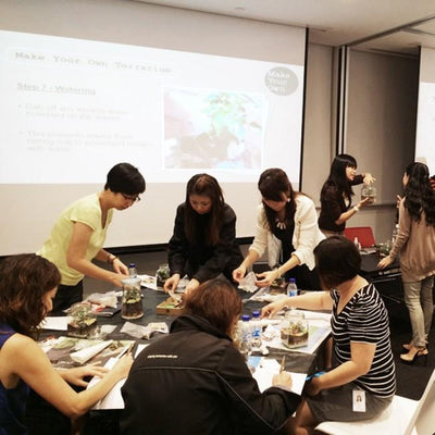 Virtual Zoom Corporate Sand Art Planter Workshop Singapore - Limited Edition