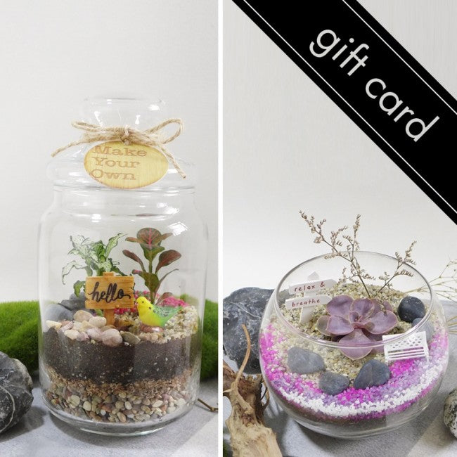 Terrarium Workshop Gift Card (Choice of Open/Closed Terrarium by Recipient)