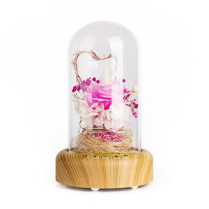 Rose Bottle Led Night Light Rechargeable Wireless Bluetooth Speaker