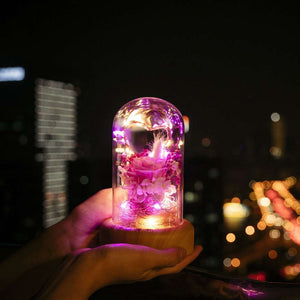 Rose Led Night Light Speaker