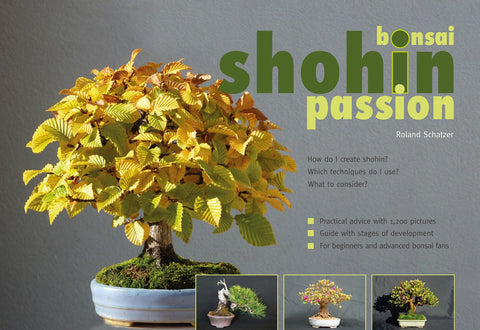 Shohin Bonsai Passion
