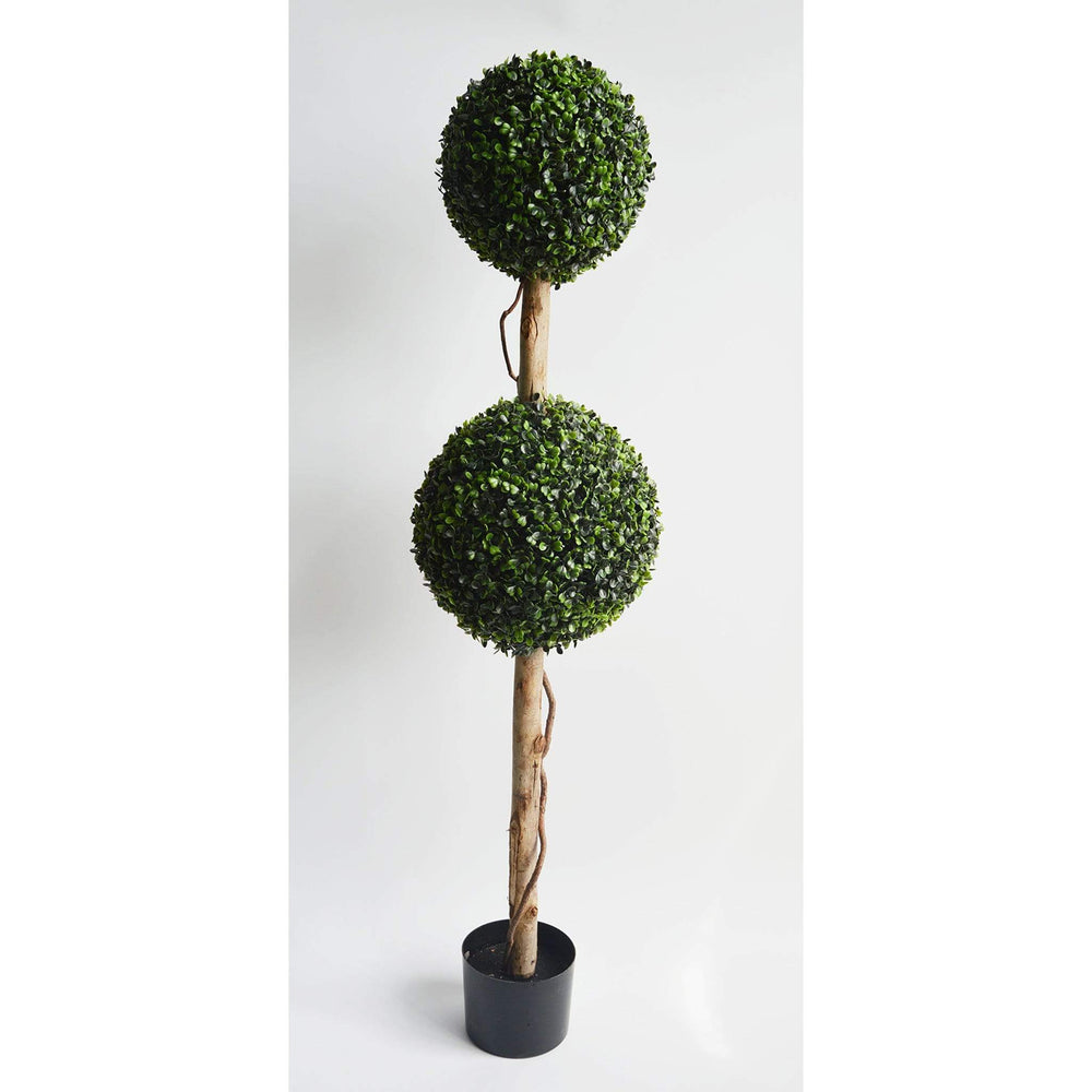 Boxwood Double Ball Topiary 120cm