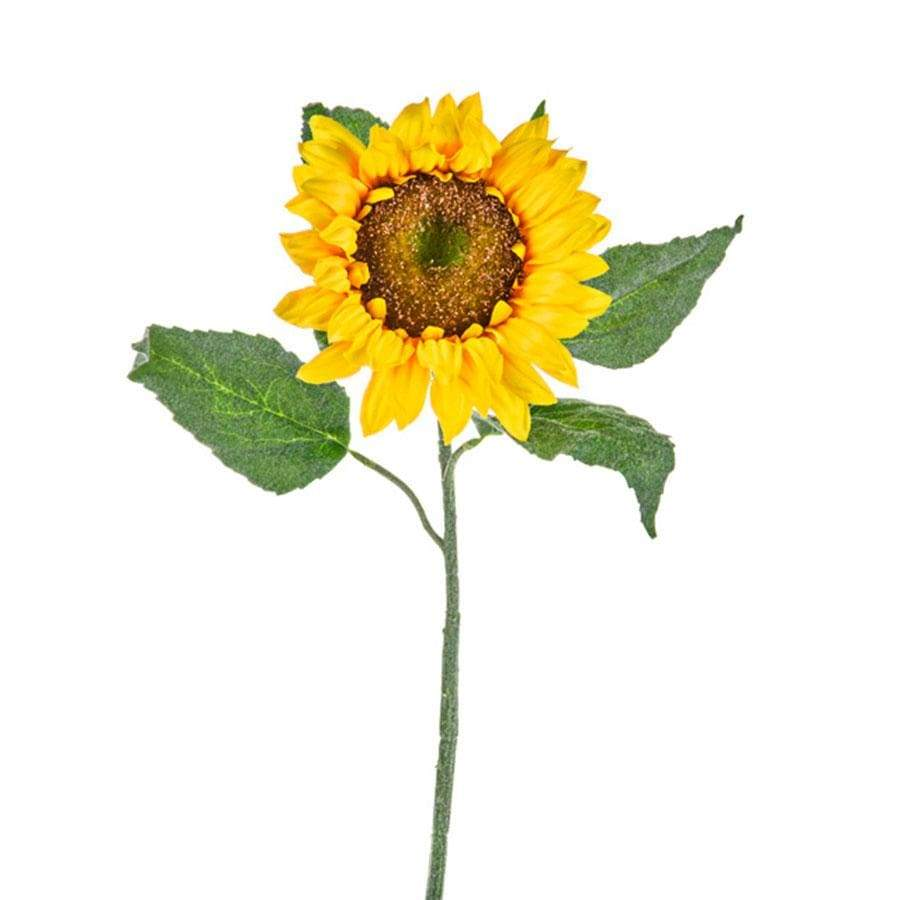 CB Imports Sunflower Susan Large Yellow