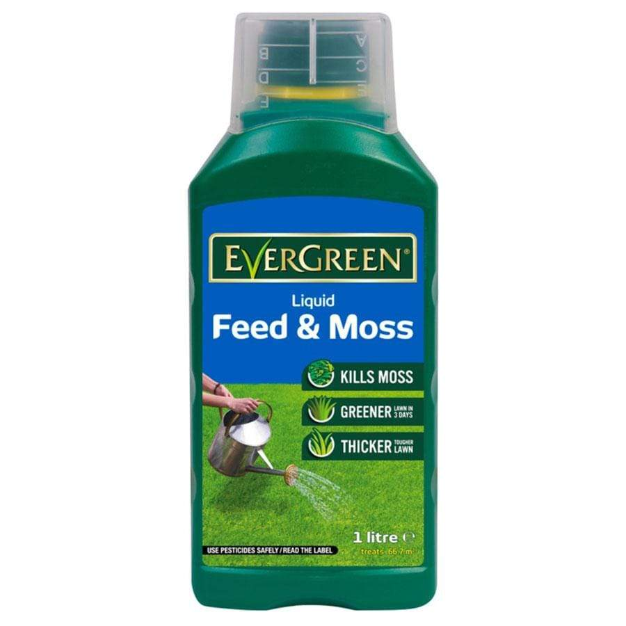 Evergreen Liquid Feed and Moss Killer 1L