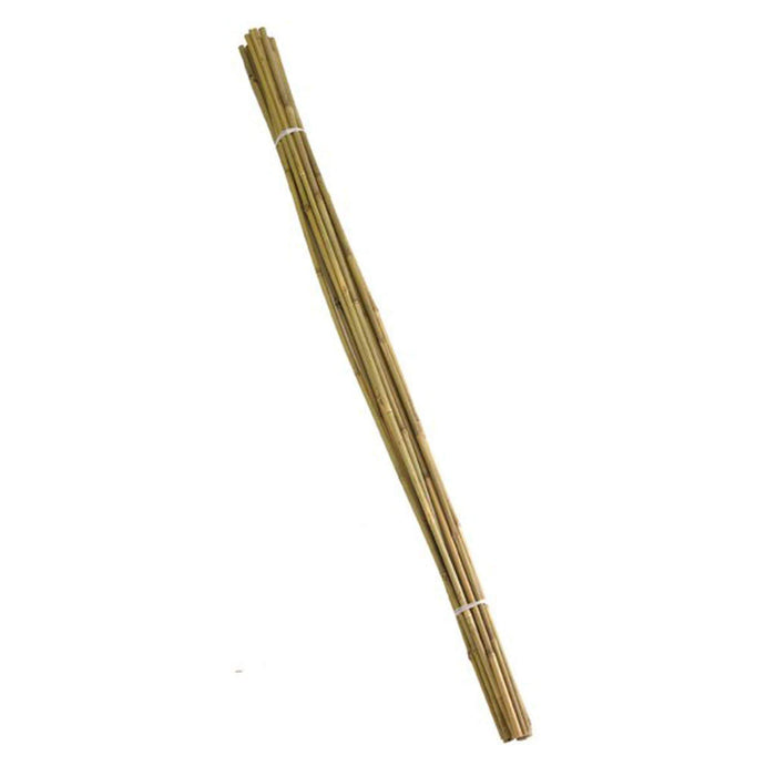 Smart Extra Thick Bamboo Canes 210cm Smart Extra Thick Bamboo Canes 210cm