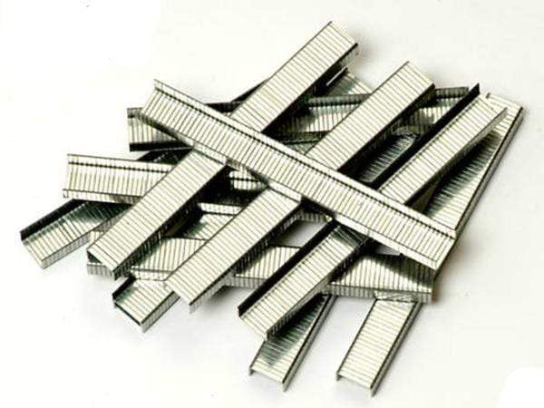 "Worldwide 1000 Heavy Duty 10mm Square 3/8"" Staples"